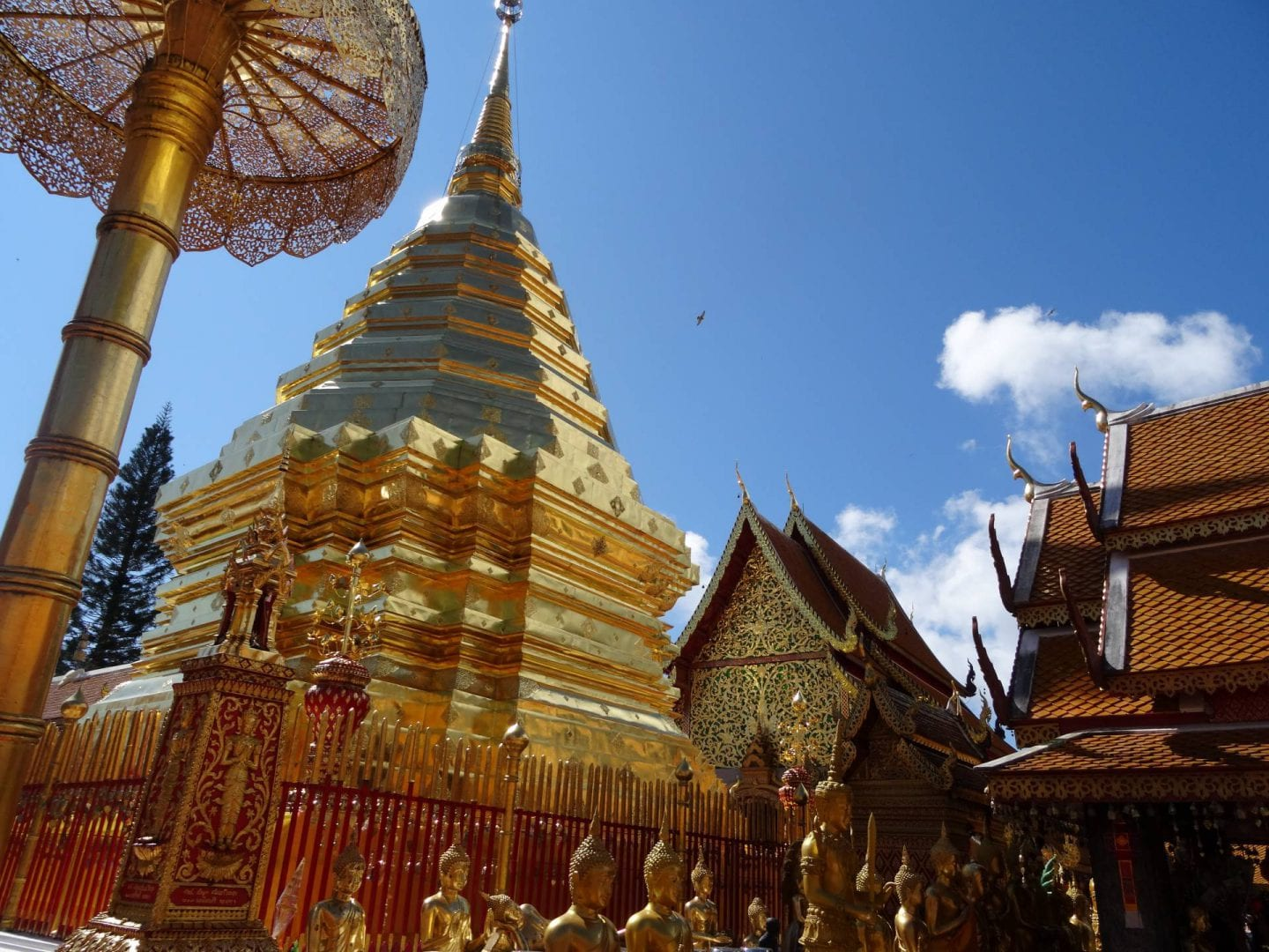 Top tips for a visit to Chiang Mai