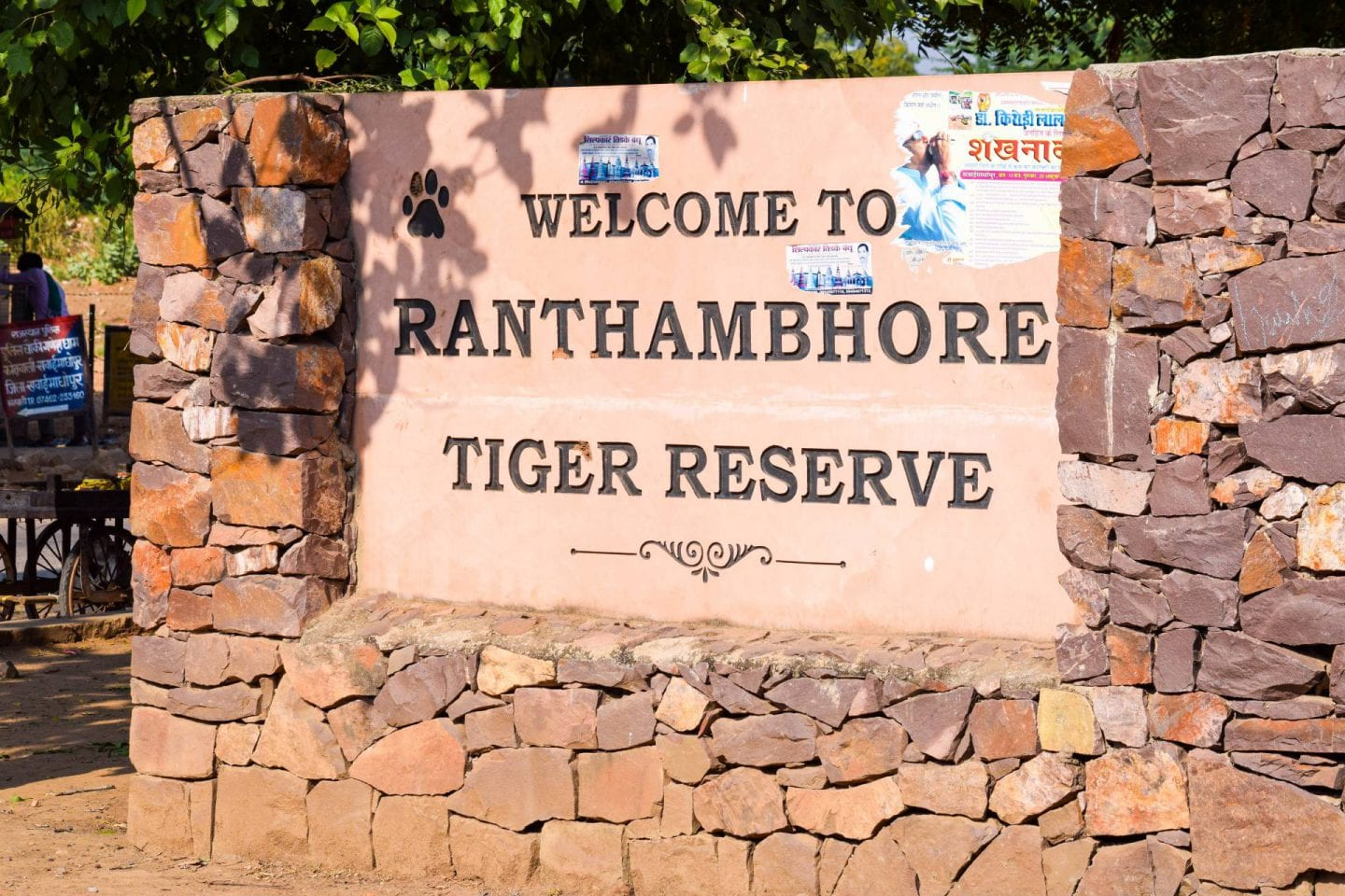 Ranthambore National Park: the real life Jungle Book