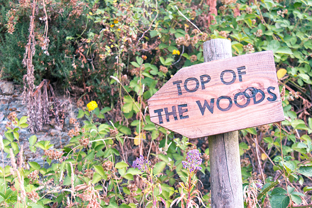 Would Be Traveller Top of the Woods Sign