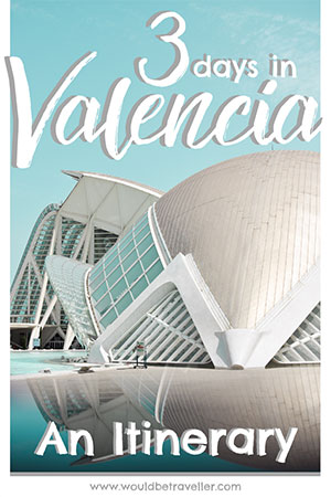 Would Be Traveller 3 days in Valencia Pin