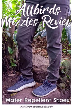 Allbirds Mizzles Review pin